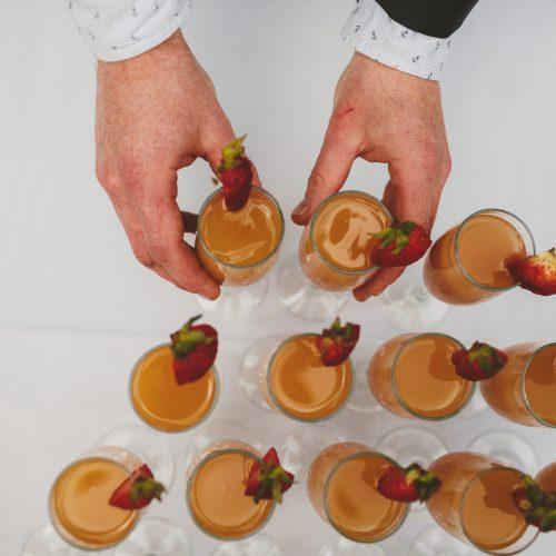 Wedding toast Strathcona Park Lodge Sea Tree Weddings