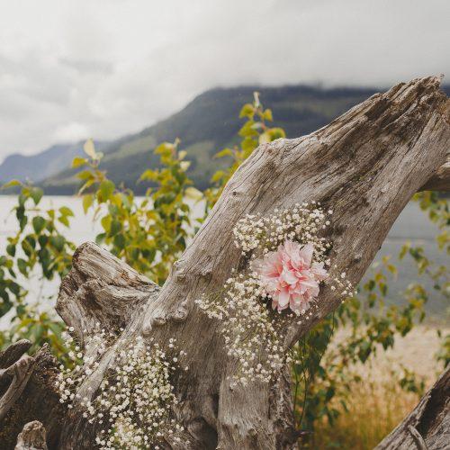 Wedding Ceremony Rustic Decoration. Drift Wood. Pink Flowers